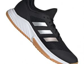 Adidas Court Team Bounce M EF2642 shoes